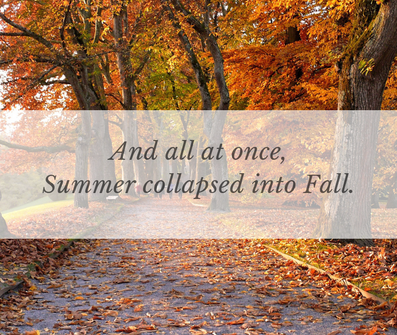 And all at once, Summer collapsed into Fall….