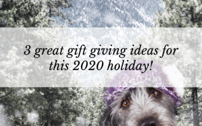 3 great gift giving ideas for this 2020 holiday!